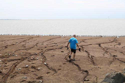 a volunteer cleaning up a beach